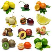 Fruit Sampler Two — Stock Photo