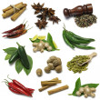 Spice Sampler - Stock Photo
