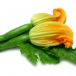 Zucchinis with Flower — Stock Photo #9982130