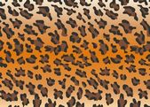 Vector leopard skin — Stock Vector