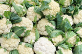 Cauliflower on display — Stock Photo