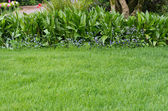 Green lawn with a flower bed border — Stock Photo