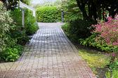 Garden path through the woods — Stock Photo