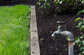 Water faucet or spigot in the garden — Stock Photo