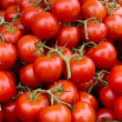 Stock Photo: Vine ripened tomato clusters