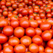 Fresh tomatoes on display — Stock Photo #9392754