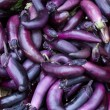 Eggplant on display — Stock Photo