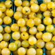 Yellow cherry tomatoes in pint boxes — Stock Photo