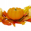 Fall or Thanksgiving or Halloween decoration isolated on white — Stock Photo #9393468