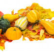 Stock Photo: Arrangement of gourds on leaves