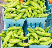 Shishito peppers displayed in baskets — Stock Photo