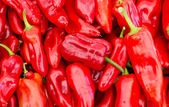 Red bell peppers on display — Stock Photo