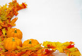 Colorful fall leaves and pumpkins — Stock Photo