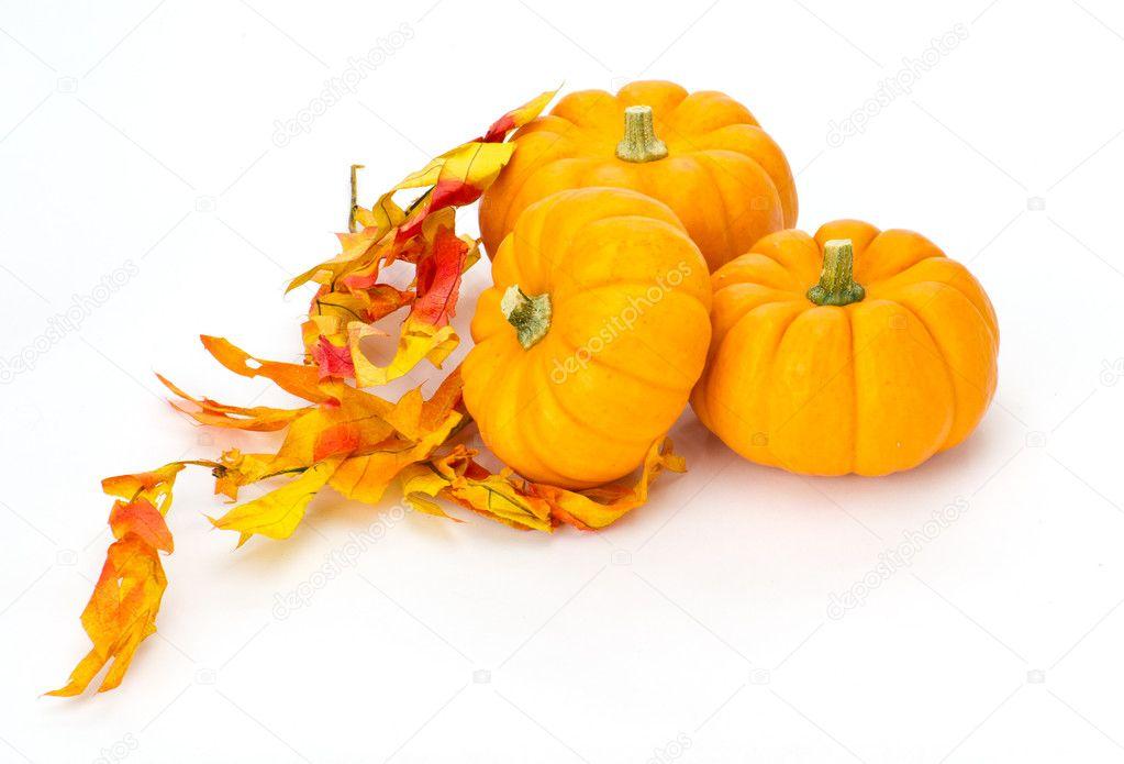 多彩的秋天树叶和南瓜 - 图库图片