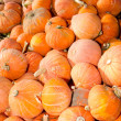 Stock Photo: Orange hubbard winter squash
