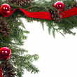 Decorative border with cones ornaments ribbon — Stock Photo