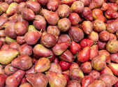 Freshly harvested red bartlett pears on display — Stock Photo