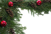 Decorative border with cones and ornaments — Stock Photo