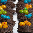 Two rows of candy bird nests — Stockfoto