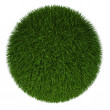 Nature ball in fur grass style — Stock Photo #10565588