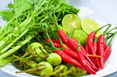Red chilli with fresh vegetables — Stock Photo