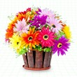 Colorful of flower pot — Photo