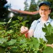 Woman and redcurrant — Stock Photo #9313441