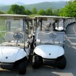 Royalty-Free Stock Photo: Golf carts