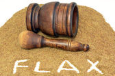Flax Seed With Mortar and Pestle — Stock Photo