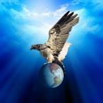 Eagle and earth — Stock Photo #9702690