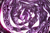Texture of cabbage — Stock Photo