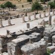 Part on the locality of Ephesus, Izmir, Turkey - Stock Photo