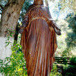 Statue of Virgin Mary — Stock Photo #9972959