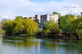 View of a river in Oradea, Romania — Stock Photo