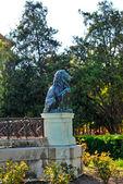 Bronze lion statue — Stock Photo