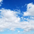 Deer blue sky and clouds — Stock Photo #9882945