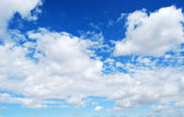 Deer blue sky and clouds — Stock Photo