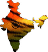Indian map with tricolour on tiger skin pattern — Stock Photo