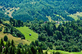 Idyllic view of a green valley in rural Romania — Stock Photo