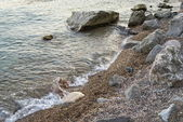 Black sea, stones ashore. — Stock Photo