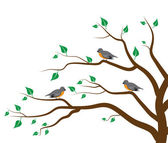 Tree Birds — Stock Vector