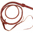 Foto Stock: Braided Whip