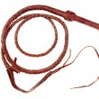 Stockfoto: Braided Whip