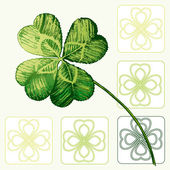 Four-leaved Cloverleaf, Shamrock — Stock Vector