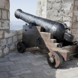 Fortress Cannon — Stock Photo