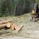 ������, ������: Logging Operation