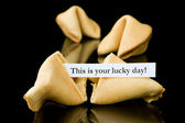 "Fortune cookie: ""This is your lucky Day!"" — Stock Photo"