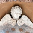 Winged Cherub Statue — Foto Stock