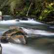 Stock Photo: Tranquil Mountain Stream