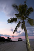 Tropical Beach Evening — Stock Photo